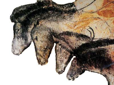 Visite virtuelle de la grotte Chauvet
