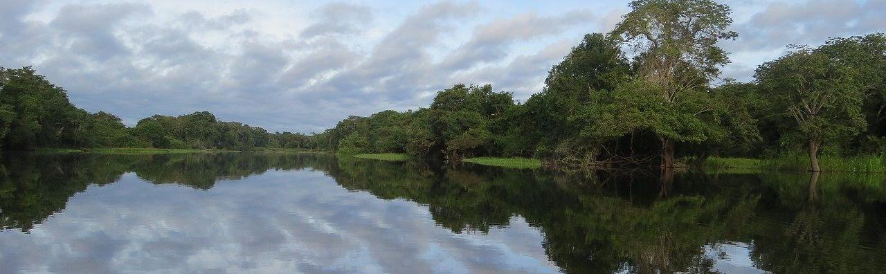 Correction du travail sur habiter l'Amazonie